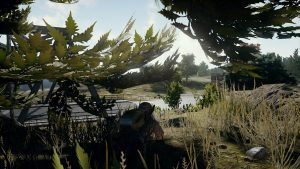 Playerunknown's Battlegrounds survivalgids